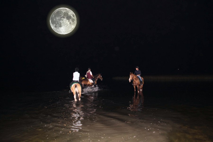 Night time excursion on horseback